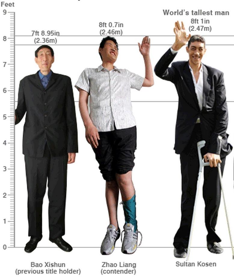 Tallest Man Ever: Robert Wadlow