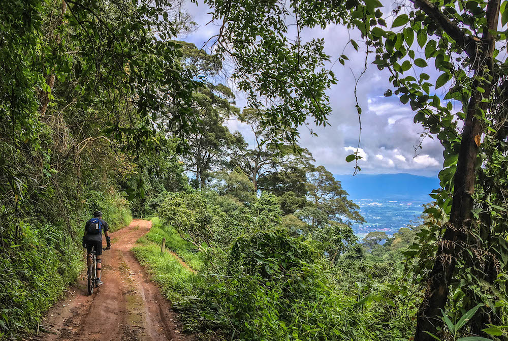 downhill-riding