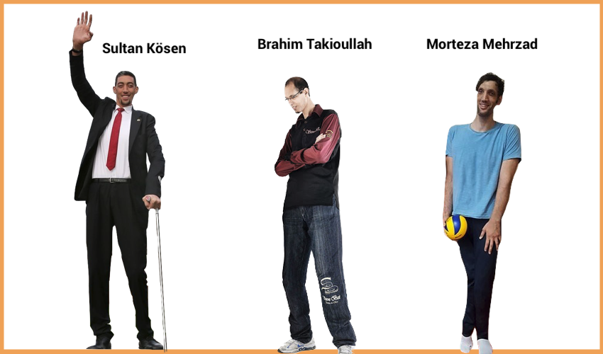 Top 3 Tallest People in the World